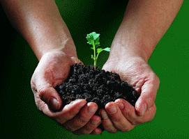 Kompost, Mutterboden, Biomassehof Qualität