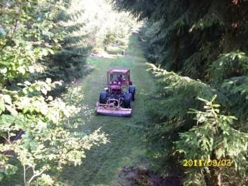 Holzeinschlag, Mulcharbeiten im Frost, Dienstleistungen Biomassehof